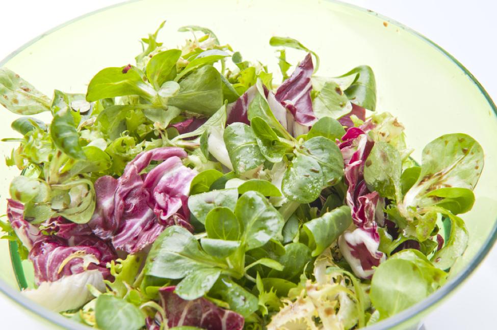 dandilion salad